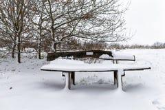 在新鲜的雪盖的长木凳 库存照片