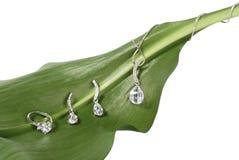 在新鲜的绿色叶子的人造珠宝 免版税库存图片