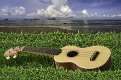 在新鲜的绿草的尤克里里琴与蓝天和海 免版税库存照片