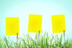 在新鲜的绿草的银色名片持有人与drople 库存图片