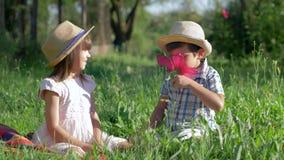 在新鲜空气的可爱的儿童的夫妇,小男孩提出花给坐在绿草的女孩 股票录像