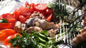 在新鲜蔬菜和烤鸡板材的美丽的水多的静物画  HD 免版税库存照片