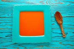 在方形的绿松石盘的西红柿酱 库存照片
