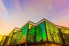 在方格的玻璃墙的上升生动的晚上太阳的反射 图库摄影