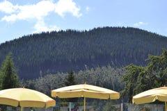 在施内山山-下奥地利州的黄色遮阳伞 免版税库存照片
