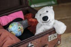 在旅客手提箱的北极熊玩具 免版税图库摄影