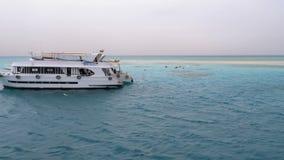 在旅游游艇背景的潜航和佩戴水肺的潜水在白色含沙海岛附近的 ?? 股票录像