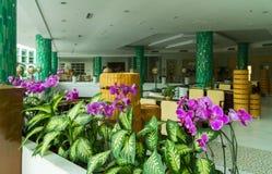 在旅馆手段Intime大东海海湾的三亚5的舒适大厅 库存照片