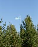 在旗杆的哈萨克斯坦旗子在树后 卡拉干达, Kaz 免版税库存图片