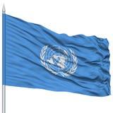 在旗杆的联合国旗子 图库摄影