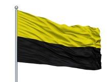 在旗杆,哥斯达黎加的Canton De同田City旗子,隔绝在白色背景 库存例证