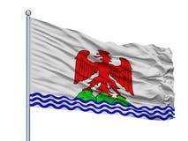 在旗杆,法国的孔德De Nice City旗子,隔绝在白色背景 向量例证