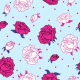 在无缝蓝色的背景的桃红色玫瑰 皇族释放例证