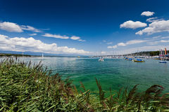 在日内瓦湖的看法-紫胶Leman -在一个晴天 图库摄影