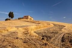 在日出以后的托斯坎乡下,托斯卡纳,意大利 免版税库存图片