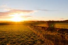 在日出光的有薄雾的农村高地风景 免版税库存照片