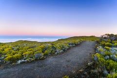 在日出期间的供徒步旅行的小道在雷乌尼翁冰岛火山区  库存图片