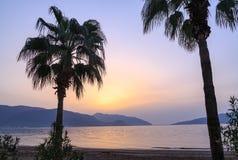 在日出期间的棕榈树剪影在马尔马里斯港 图库摄影