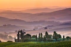 在日出期间的托斯坎农田,意大利 图库摄影