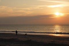 在日出海滩的妇女走的狗 免版税库存图片
