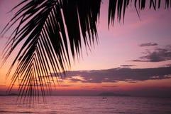 在日出海滩前 库存图片