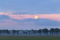 在日出的充分的蜂蜜月亮 图库摄影