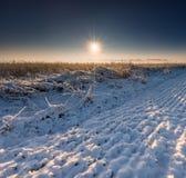 在日出的冬天领域 免版税库存照片