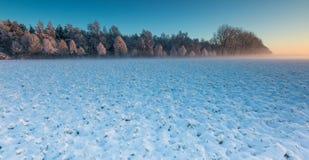 在日出的冬天领域 库存照片