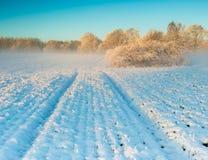在日出的冬天领域 图库摄影
