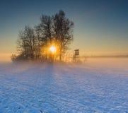在日出的冬天领域 免版税库存图片