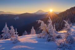 在日出的冬天风景 图库摄影