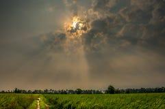 在日出的太阳光芒在村庄农场 库存照片
