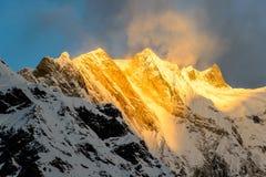 在日出的安纳布尔纳峰山顶 免版税库存图片