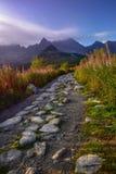 在日出的山道路在Tatra山 免版税库存照片