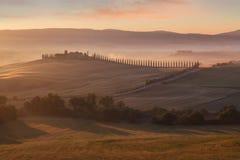 在日出的托斯卡纳横向 典型为区域托斯坎农舍,小山,葡萄园 意大利新绿色托斯卡纳风景 免版税库存照片