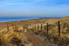 在日出的沙丘风景 库存图片