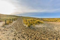 在日出的沙丘风景 免版税图库摄影