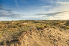 在日出的沙丘 免版税库存图片