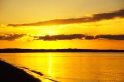 在日出的海湾切塞皮克犬 库存照片