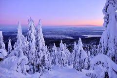 在日出的温哥华地平线从赛普里斯山在冬天 免版税库存图片