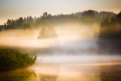 在日出的湖 库存图片