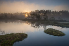 在日出的湖 免版税库存照片