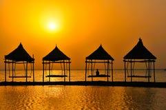 在日出的热带横向 免版税库存图片
