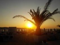 在日出的热带海滩与海滩睡椅和伞 免版税库存图片