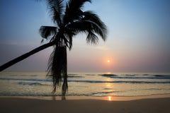 在日出的热带海滩 库存照片