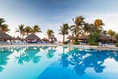在日出的热带游泳池 库存图片
