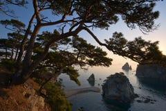 在日出的狂放的沿海 图库摄影