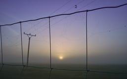 在日出的电子帆柱 免版税库存照片