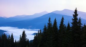 在日出的美丽的小山在喀尔巴阡山脉 免版税库存照片