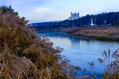 在日出的美丽的小河 库存图片